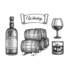 ink sketch set whiskey vector image