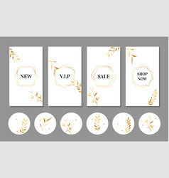 Luxury stories templates and icons for instagram vector