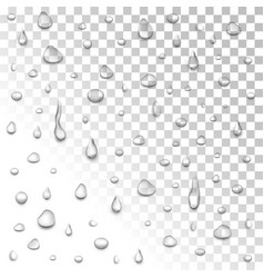 water rain drops or steam shower isolated on vector image