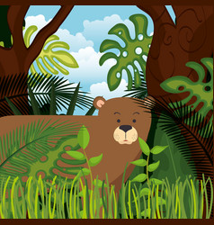 wild bear grizzly in the jungle scene vector image