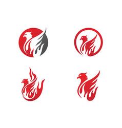 falcon wing logo template vector image