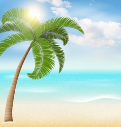 Beach with palm and clouds Summer vacation vector image