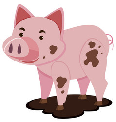 Cute pig in muddy puddle vector