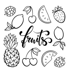 fruit symbols doodle outline drawing tropical vector image