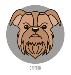 Portrait of griffon vector