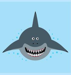 cartoon funny shark vector image
