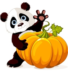 Harvest Panda vector image vector image