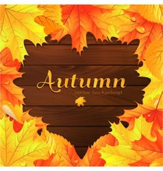 autumn background with maple leaves vector image
