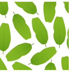 Banana leaves seamless pattern vector