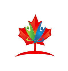 canada leaf icon vector image