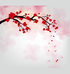 cherry blossom for chinese new year and lunar new vector image