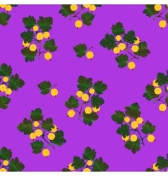 Colored gooseberries seamless pattern vector image
