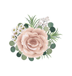 dusty pink blush white and creamy rose flowers vector image