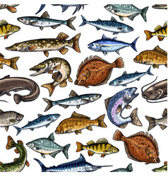 Fish seamless pattern for seafood design vector