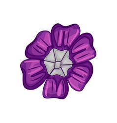 Floral botanical flower color ornament purple vector