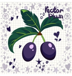 fresh plums with leaves vector image