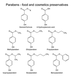 Parabens molecules vector image