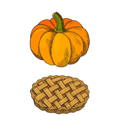 pumpkin vegetable and baked pie icons set vector image