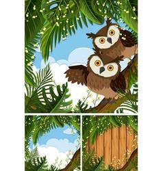 Three scenes with owls in woods vector