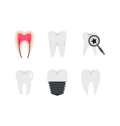 tooth icon set flat style vector image