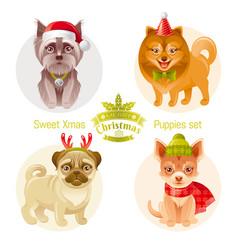 Puppy dog breeds icon set - yorkshire terrier vector