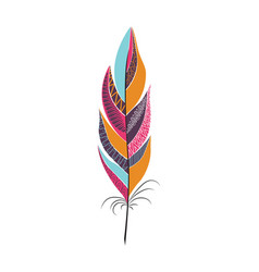 colored large bright bird feather vector image vector image