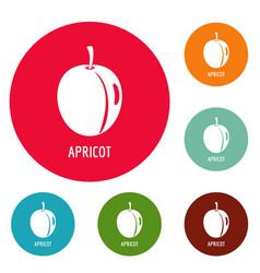 apricot icons circle set vector image