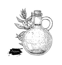 Bottle of sesame oil with plant hand drawn vector