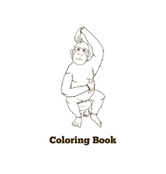 Orangutan cartoon coloring book vector image