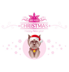 puppy yorkshire terrier dog in santa claus hat vector image