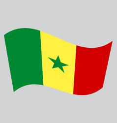 flag of senegal waving on gray background vector image