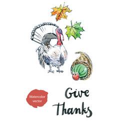watercolor turkey leaves vector image vector image