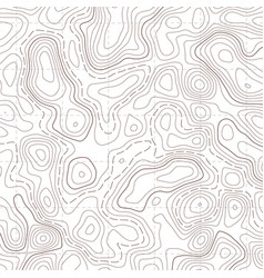 Creative of topographic map vector