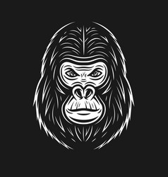 Gorilla face on dark backdrop vector