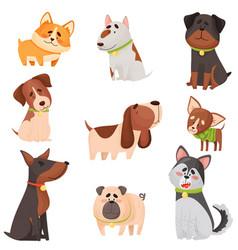 Set cartoon thoroughbred dogs vector