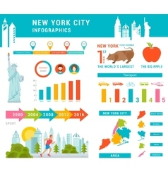 Set Infographics of New York City vector