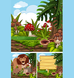 three scenes with wild animals in forest vector image