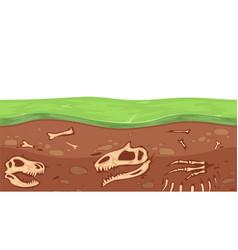 paleontology bones archeology underground vector image