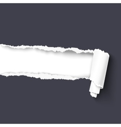 Torn paper with a scroll vector image