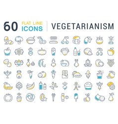 Set Flat Line Icons Vegetarianism vector image vector image
