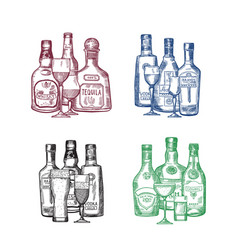 set of hand drawn alcohol drink bottles and vector image