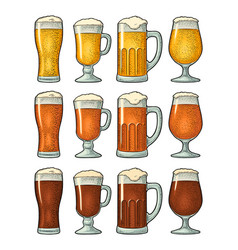 four different glasses with three types beer vector image