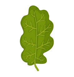 Green oak leaf icon cartoon style vector