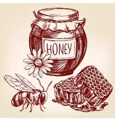 honey elements set hand drawn llustration vector image