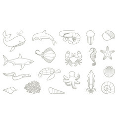 outlines of fish and other sea creatures vector image