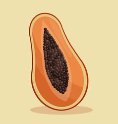 papaya nutrition healthy image vector image