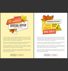 sale super quality special offer 50 percent off vector image