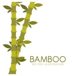 Bamboo plant design vector