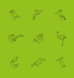 Birds set icon vector