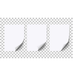 Empty sheet of white paper with curled corner vector